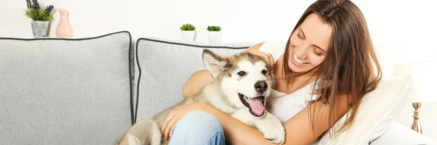 Pets and Indoor Air Quality