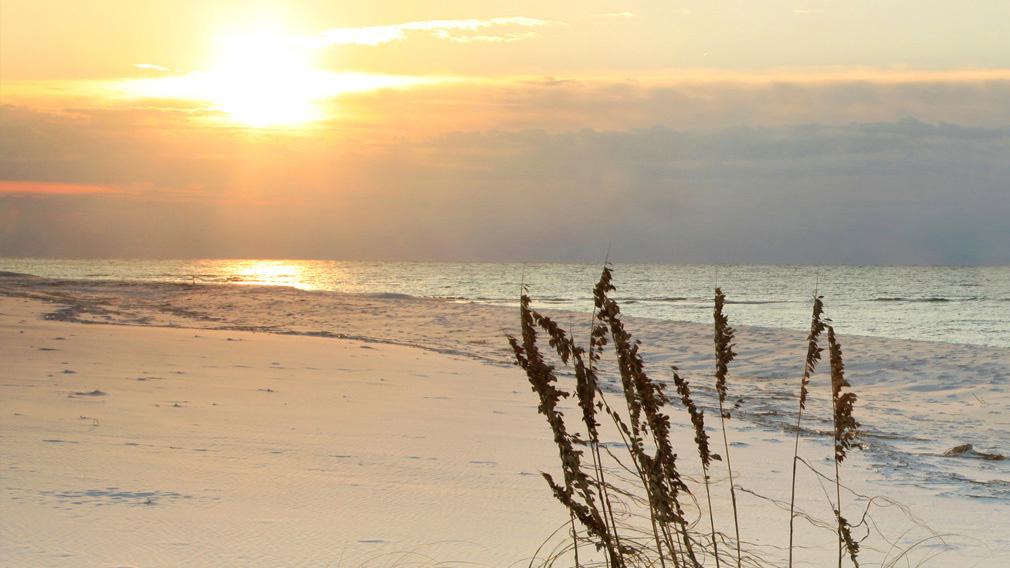 Lovely History Of Jacksonville Beach