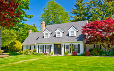 How to Save Energy With Landscaping This Cooling Season